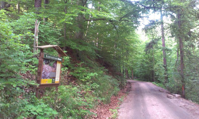 Lesní naučná stezka Harcov