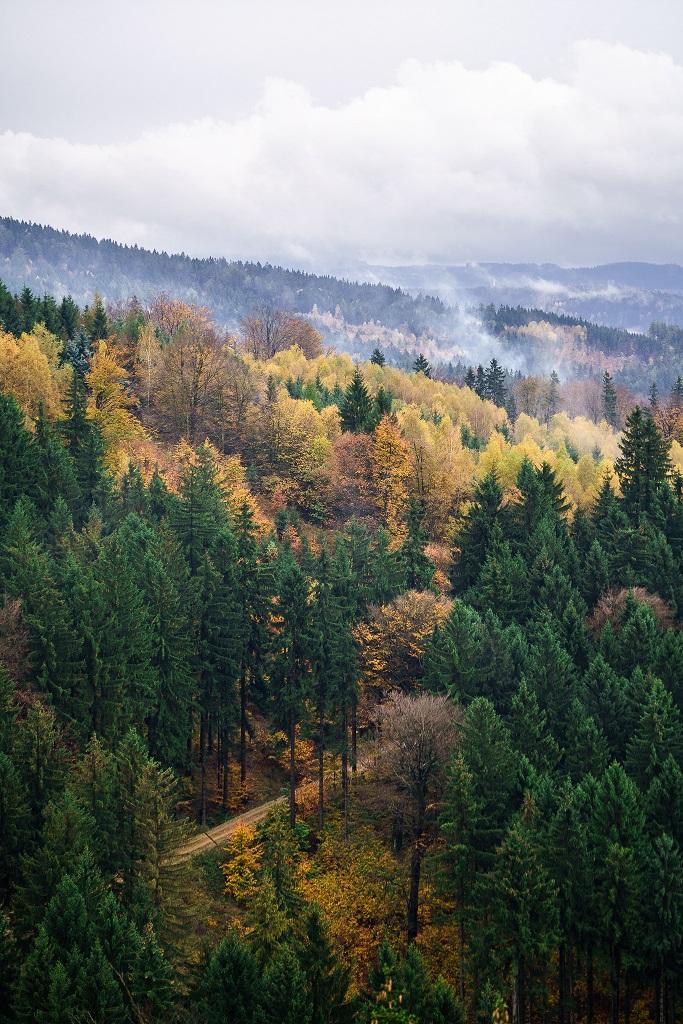 Výhled z Dračího vrchu
